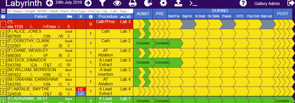 Example of Labyrinth software interface Daily Lab List