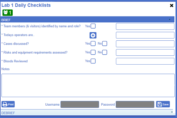 "Example image of NATSSIPS safety checklists ""briefing"" page"