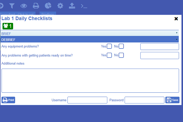 "Example image of  NATSSIPS safety checklists ""debriefing"" page"