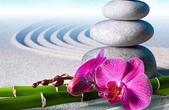 Zen stones and orchid flower with green reeds on rippling sand