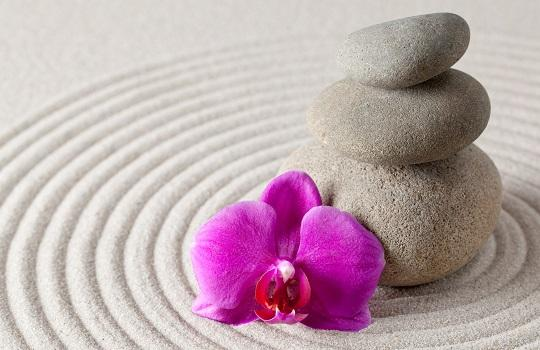 Zen stones and orchid flower on rippling sand